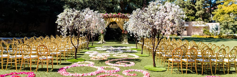 Small trees line an aisle scattered with flower petals leading towards an altar