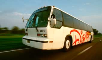 A Disney Transport bus driving on a highway